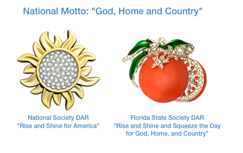 National and State DAR 2019 themes